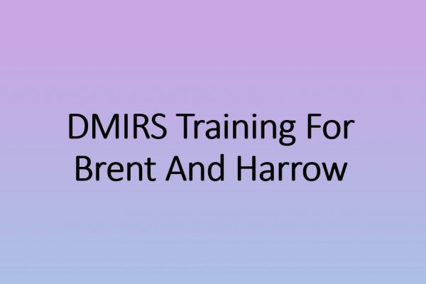 DMIRS Training for Brent and Harrow